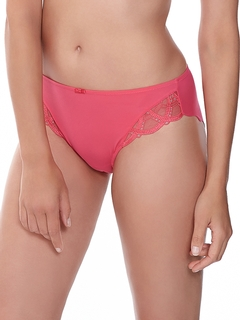 Alex Collection Brief